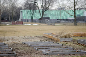 Picture of CU-Garden plots near Booker T. Washington STEM Academy