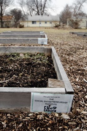 Picture of CU-Garden box